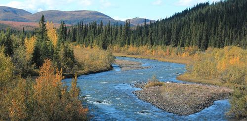 Familienreise Kanada - Kanada for family - Fluss