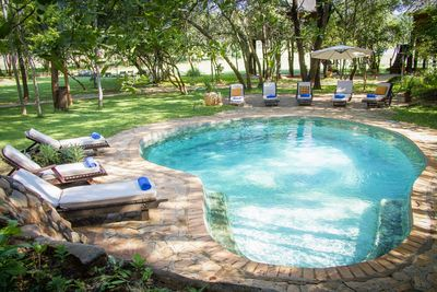 Botswana Familienreise - Botswana for family individuell - Hwange National Park - Ivory Lodge - Pool