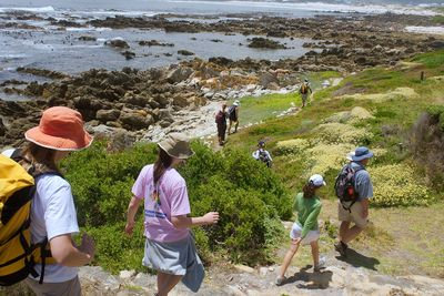 Garden Route Familienreise - Gardenroute for Teens - Wanderung in Hermanus