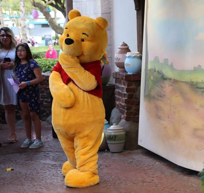 Florida Rundreise mit Kindern - Orlando - Disney World Winnie Puuh