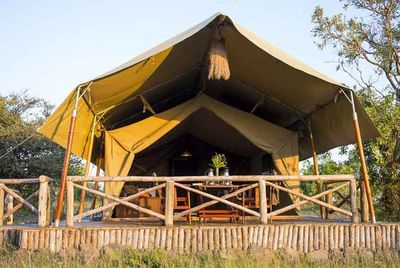 Kenia Familienreise - Kenia for family individuell - Mara North Conservancy - Kilima Camp - Safarizelt