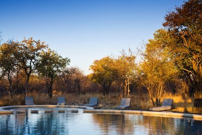 Namibia Familienreise_Namibia for family individuell - Etosha Nationalpark - Mushara Bush Lodge & Camp - Pool