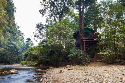 Thailand mit Kindern - Thailand for family - Our Jungle House