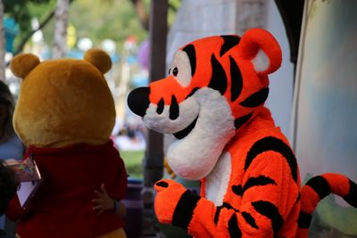 Florida Familienreise - Florida for family - Orlando Disney World - Nahaufnahme Tiger