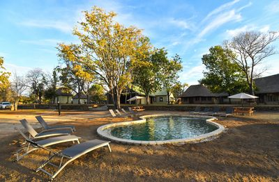 Botswana Familienreise - Botswana for family individuell - Hwange National Park - Robins Camp - Pool